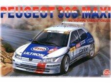 NuNu - Racing Series Peugeot 306 Maxi 1996 Rally Monte Carlo, Mastelis: 1/24. 24009