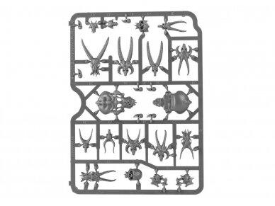 Citadel Skulls, 64-29 6