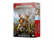Warhammer Age of Sigmar Warrior Starter Set, 80-15